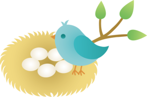 bird_with_nest_eggs